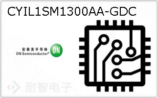 CYIL1SM1300AA-GDC